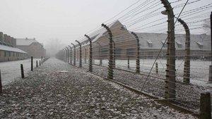 Stacheldrahtzaun in Auschwitz. | Foto: privat