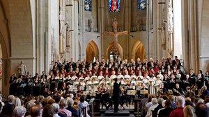 Die Musiker des Münsteraner Doms