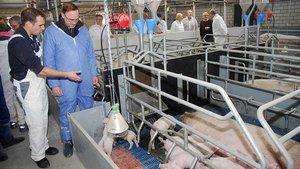 Arne Jordans (links) erläutert dem Weihbischof die technischen Entwicklungen in der Schweinezucht. | Foto: Jürgen Kappel
