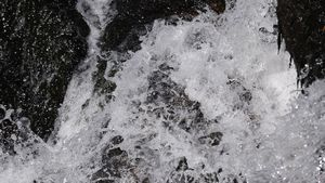 Gottesdienst-Wasser