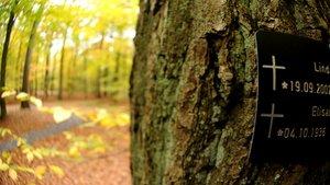 Am Grab in einem Friedwald