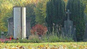 Eine Stele mit den eingravierten Namen von Verstorbenen auf dem Dammer Friedhof. | Foto: Michael Rottmann