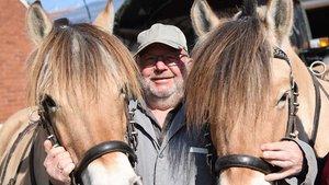 Hermann Jansen und seine Pferde