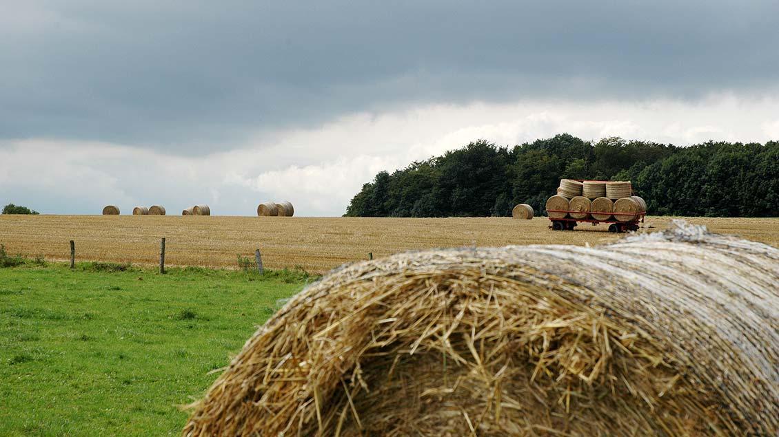 feste und brauche weltweit die mit dem erntedankfest verwandt sind, kirche+leben - warum ein junger landwirt trotz schlechter ernte, Innenarchitektur