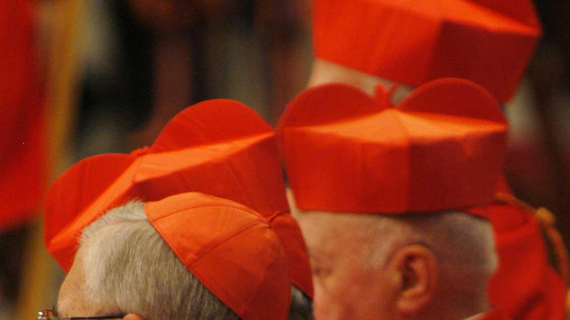 Kardinäle.