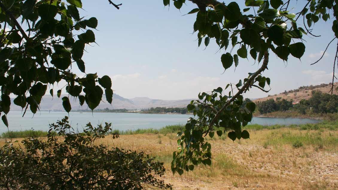 Blick auf den See Genezareth in Galiläa.