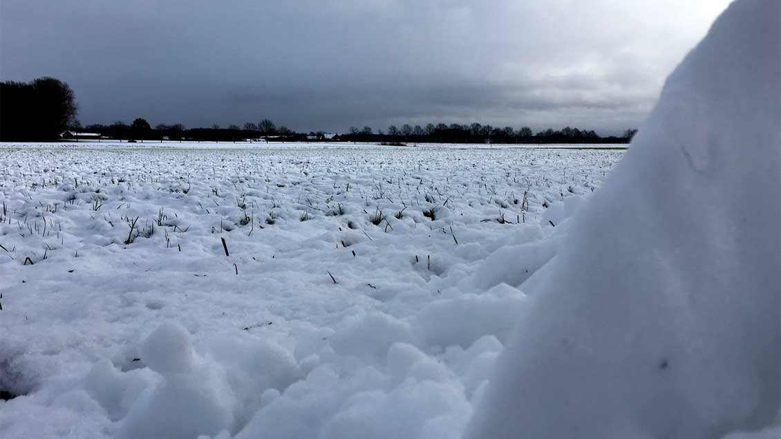 Schnee auf den Felder heute Morgen in der Bauerschaft Quantwick bei Ahaus-Wüllen.