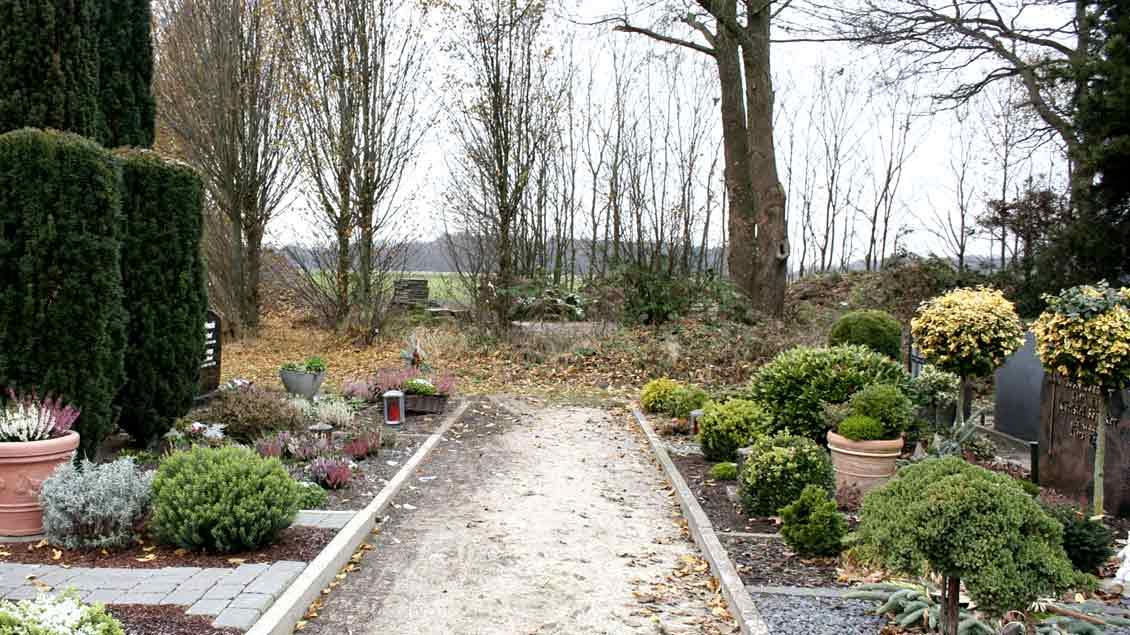 Dieser Weg auf dem katholsichen Dinklager Friedhof führt direkt in den brach liegenden Bereich, wo Arbeite rim vergangenen Sommer mehrere Plastikdosen mit Wertsachen und Bargeld gefunden haben.