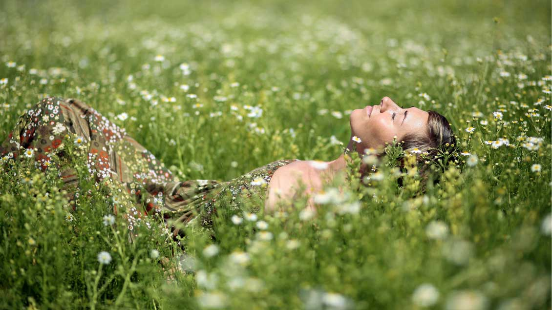 »Schaut euch die Lilien auf dem Feld an«: Zu Gelassenheit ruft das Evangelium dieses Sonntags auf.