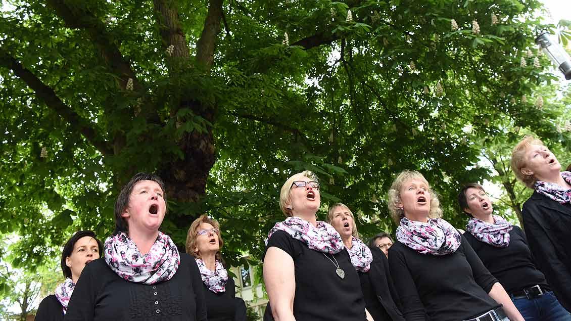 Die Skysingers aus Ostbervern spielten an der Klemensstraße. Foto: Michael Bönte