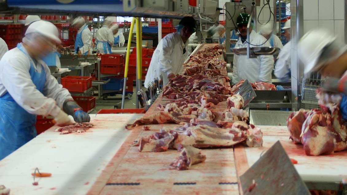 Arbeiter in einem Fleischzerlegebetrieb.