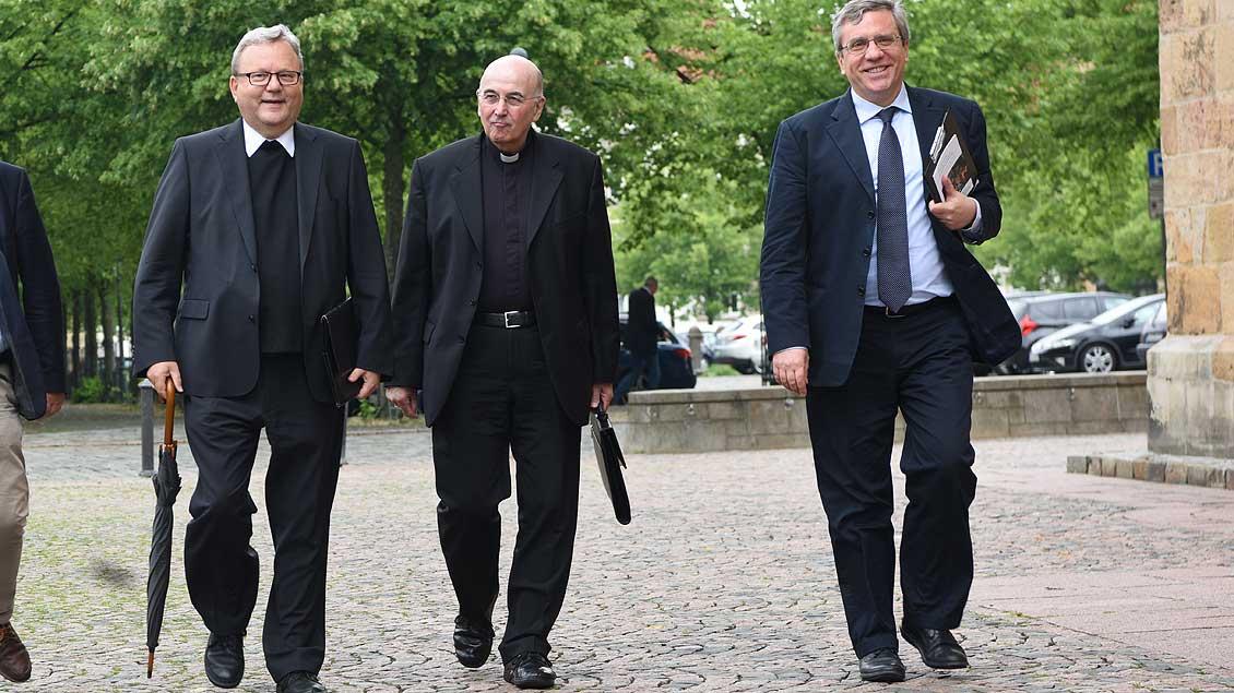 Bode, Genn, Zucconi