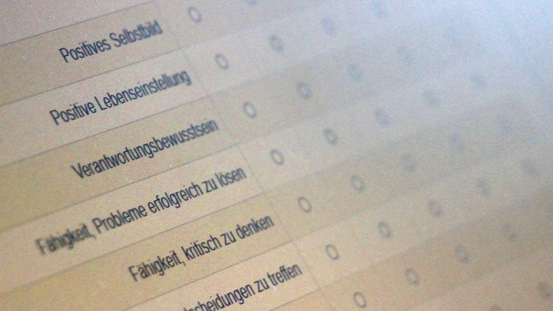 Der Vatikan-Fragebogen im Internet.