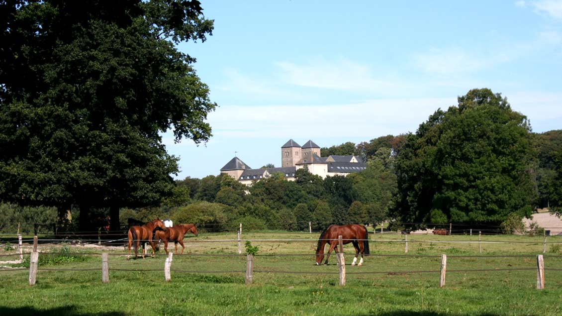 Auf dem Bauernhof nahe der Benediktinerabtei lädt der Bücher- und Flohmarkt des Klosters zum Stöbern und Kaufen ein.