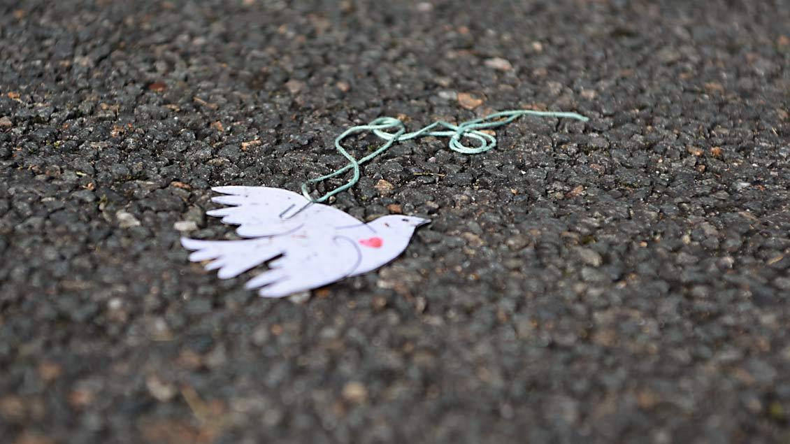 Eine verlorene  Friedenstaube. | Foto: Michael Bönte.