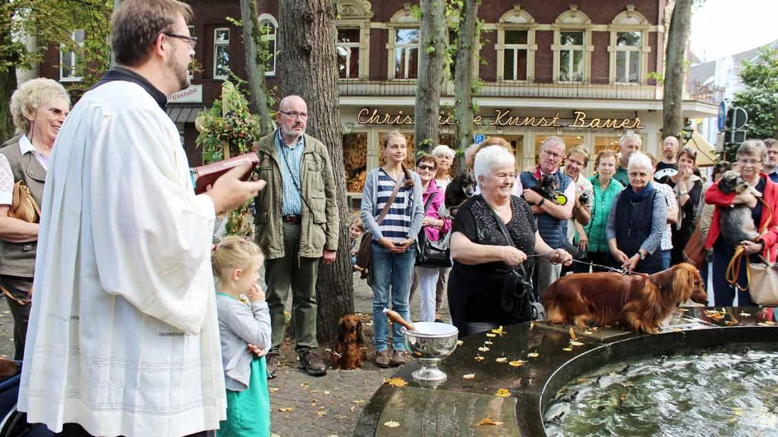 Am Noah-Brunnen segnet Pastoralreferent Bastian Rütten Menschen und Tiere. | Foto: Annette Saal