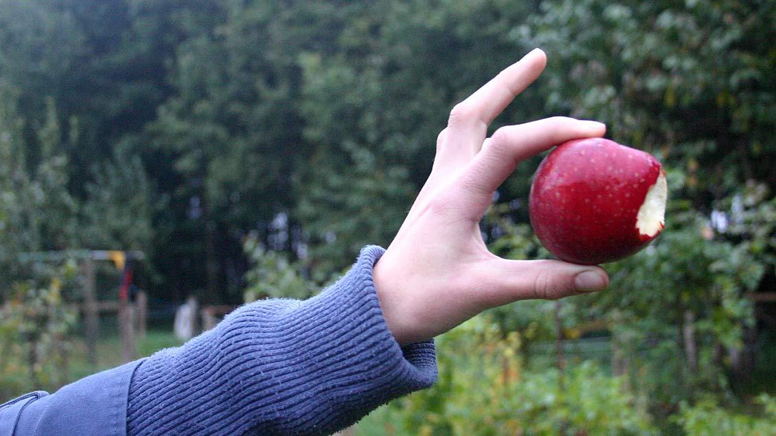 """Aufessen oder wegwerfen? Wer gute Ideen gegen Lebensmittelverschwendung hat, kann diese beim Bundespreis """"Zu Gut für die Tonne"""" einreichen."""