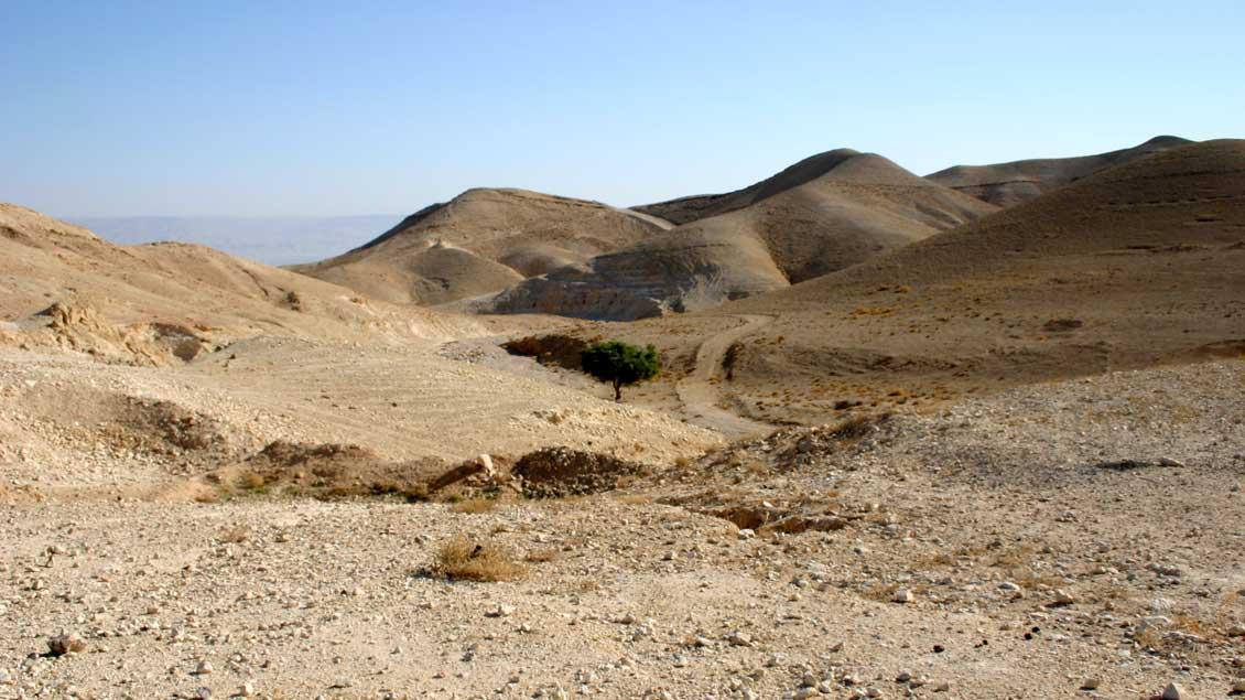 Wüste zwischen Jerusalem und Galiläa im Heiligen Land.