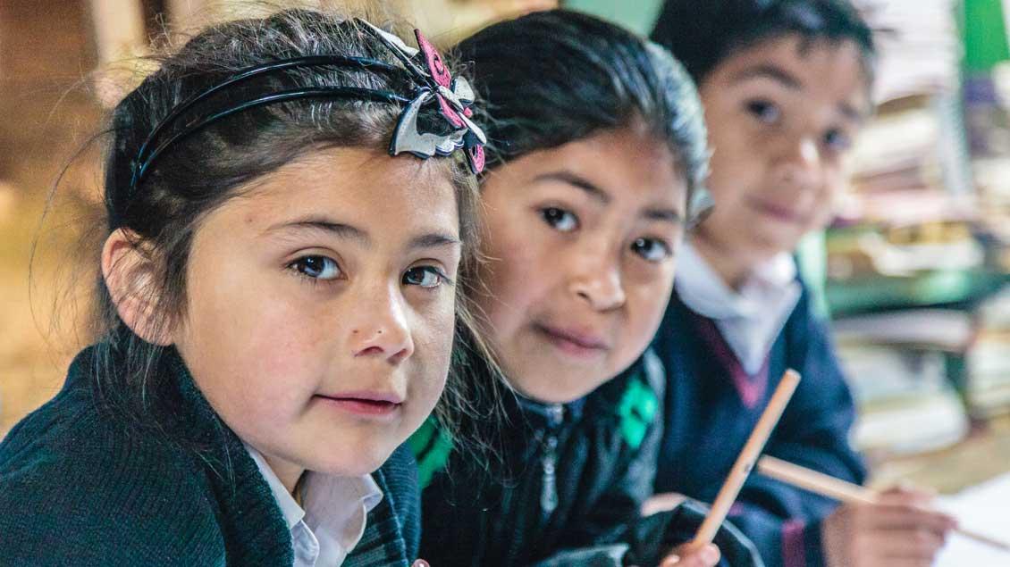 Im Süden Chiles trifft Papst Franziskus auf seiner Reise auch Angehörige des indigenen Volks der Mapuche.