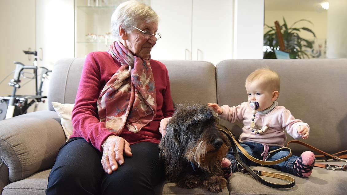 Klein und Groß sind begeistert von den Hunden. | Foto: Michael Bönte