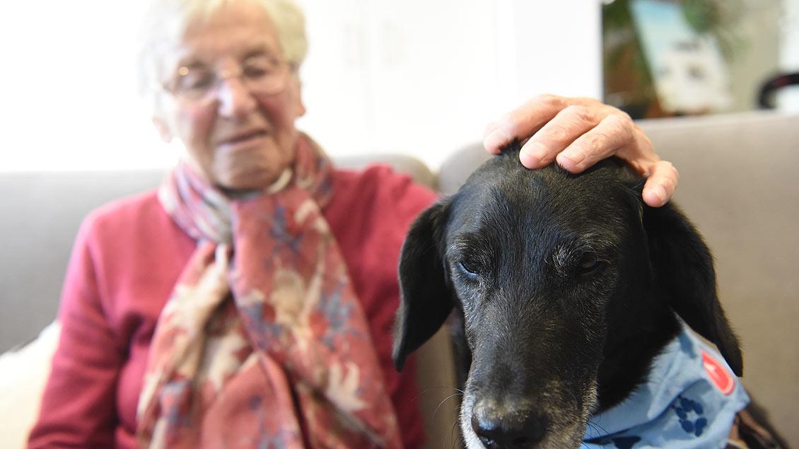 Streicheleinheiten: Emil genießt den Besuch genauso wie die alten Menschen. | Foto: Michael Bönte