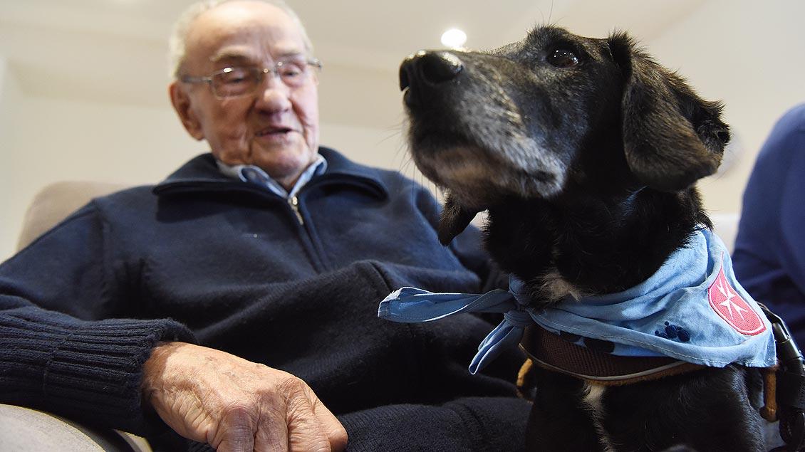 Erzähler und Zuhörer: Aufmerksam horcht Therapiehund Emil den Stimmen der alten Menschen. | Foto: Michael Bönte