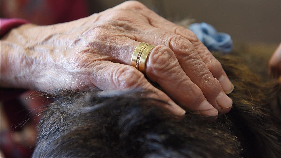 Da kommt auch der quirlige Rauhaardackel Barnie zur Ruhe: Streicheleinhaiten von einer alten Hand. | Foto: Michael Bönte