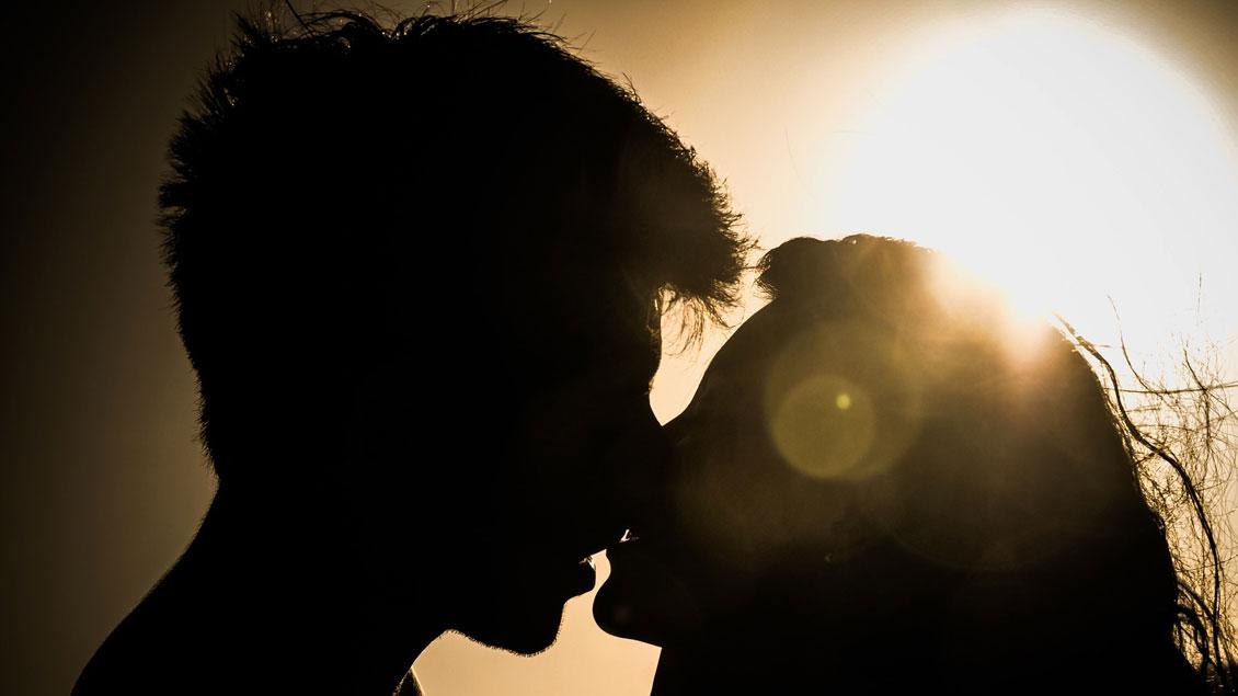 Grundlegende Änderungen im Umgang mit Sexualität im kirchlichen Lehramt fordert der Freckenhorster Kreis.