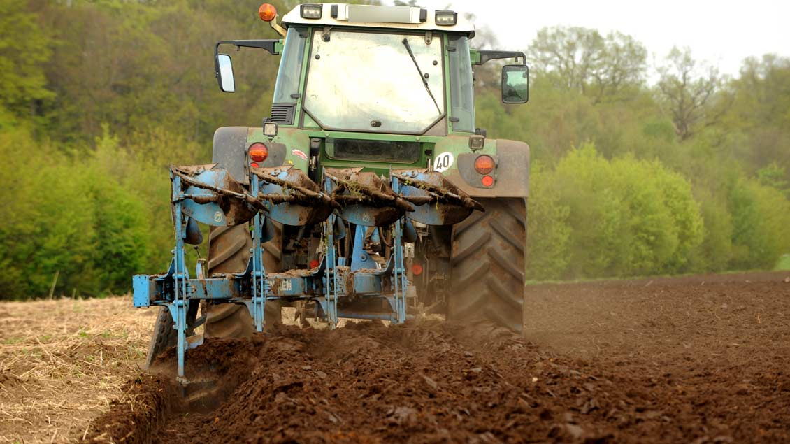 Viele Betriebe seien durch die lange Dürreperiode an ihre Belastungsgrenze und darüber hinaus geführt worden, schreibt Bischof Felix Genn den Bauernfamilien.