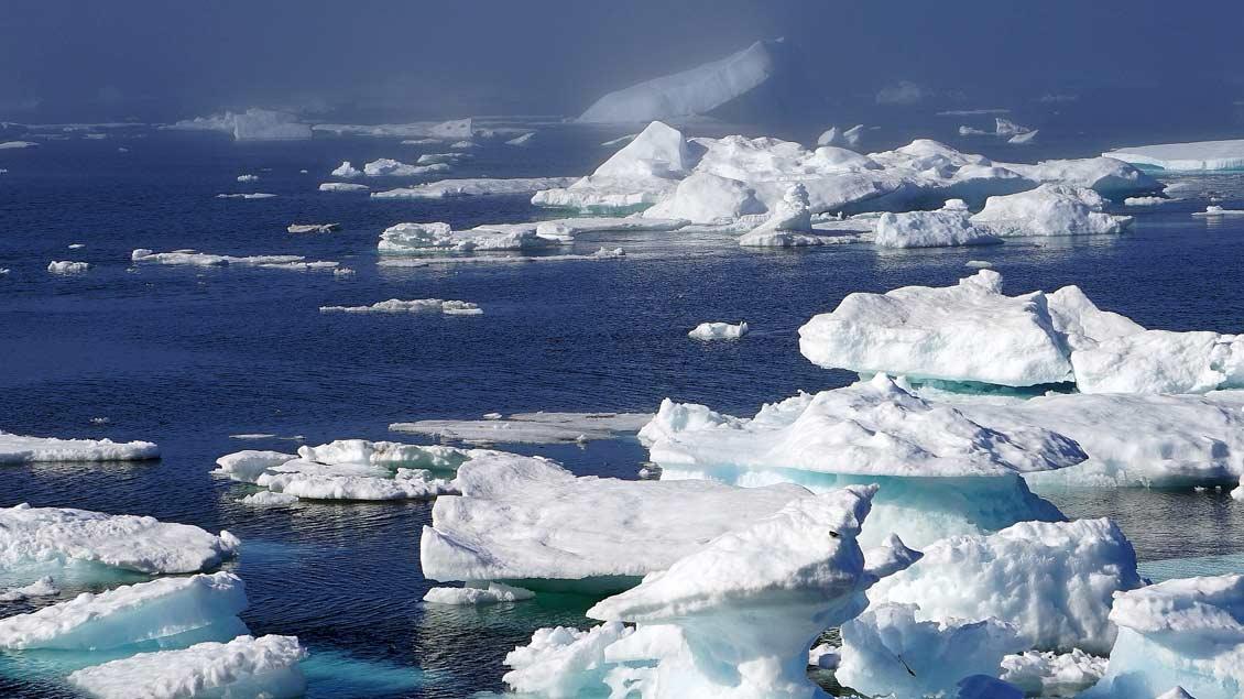 Schmelzende Gletscher und Eisberge sind Zeugen des Klimawandels.
