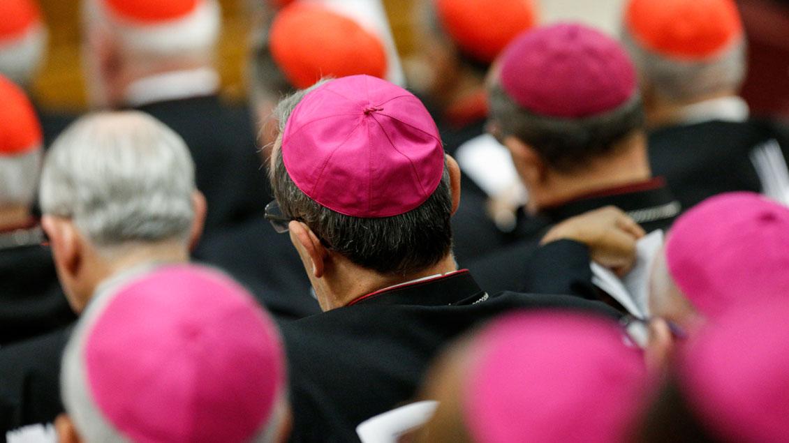 Franziskus bittet Jugendliche um Entschuldigung