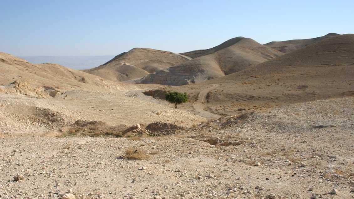 In der Jordan-Ebene im Heiligen Land, wo Johannes taufte.