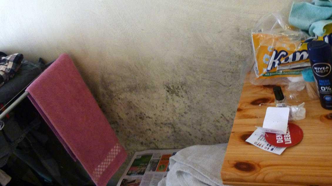 Schimmel in einer Unterkunft in Goldenstedt Foto: Florian Kossen