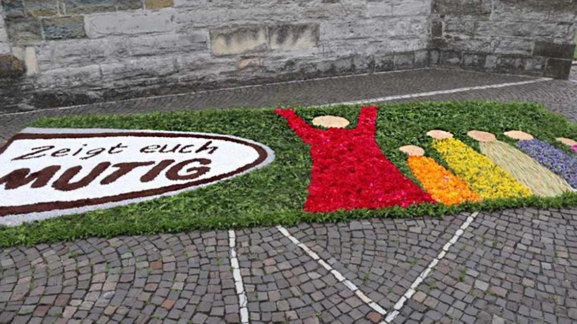 Die Landfrauen der Pfarrgemeinde St. Stephanus in Beckum haben diesen Blumenteppich gelegt. | Foto: Bernd Kruse