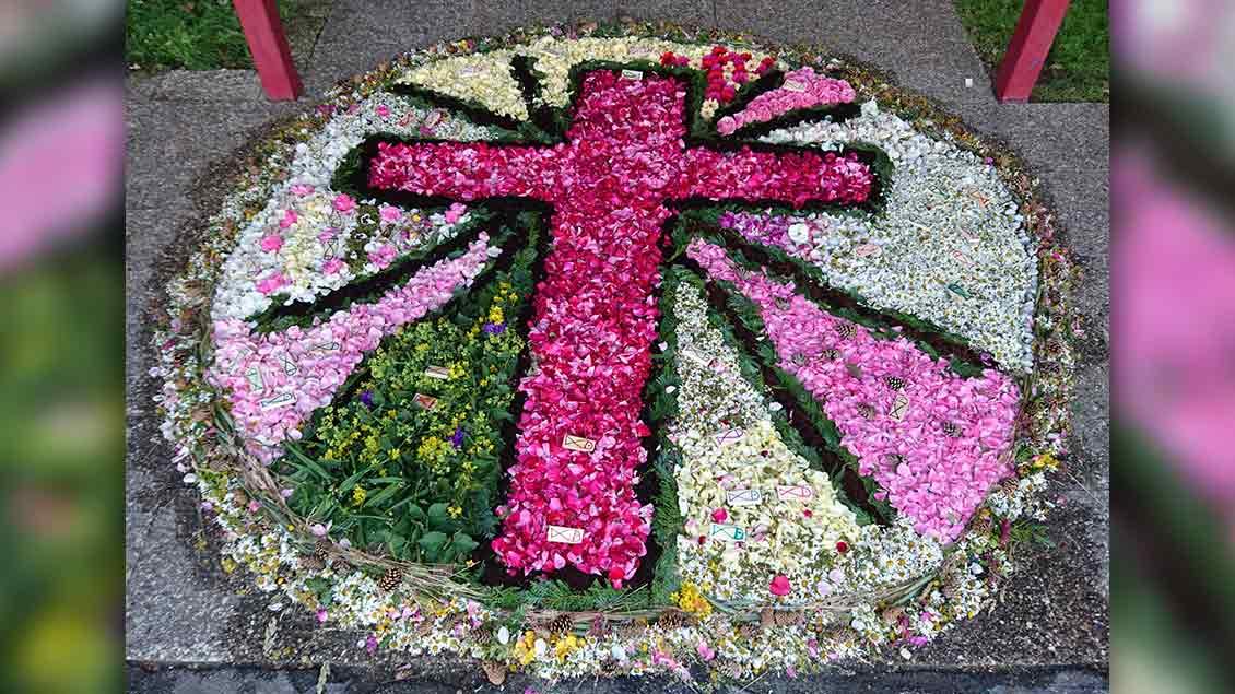 Die Kommunionkinder der St. Franziskusgemeinde in Ibbenbüren haben diesen Blumenteppich gelegt. | Foto: Regina Schulz