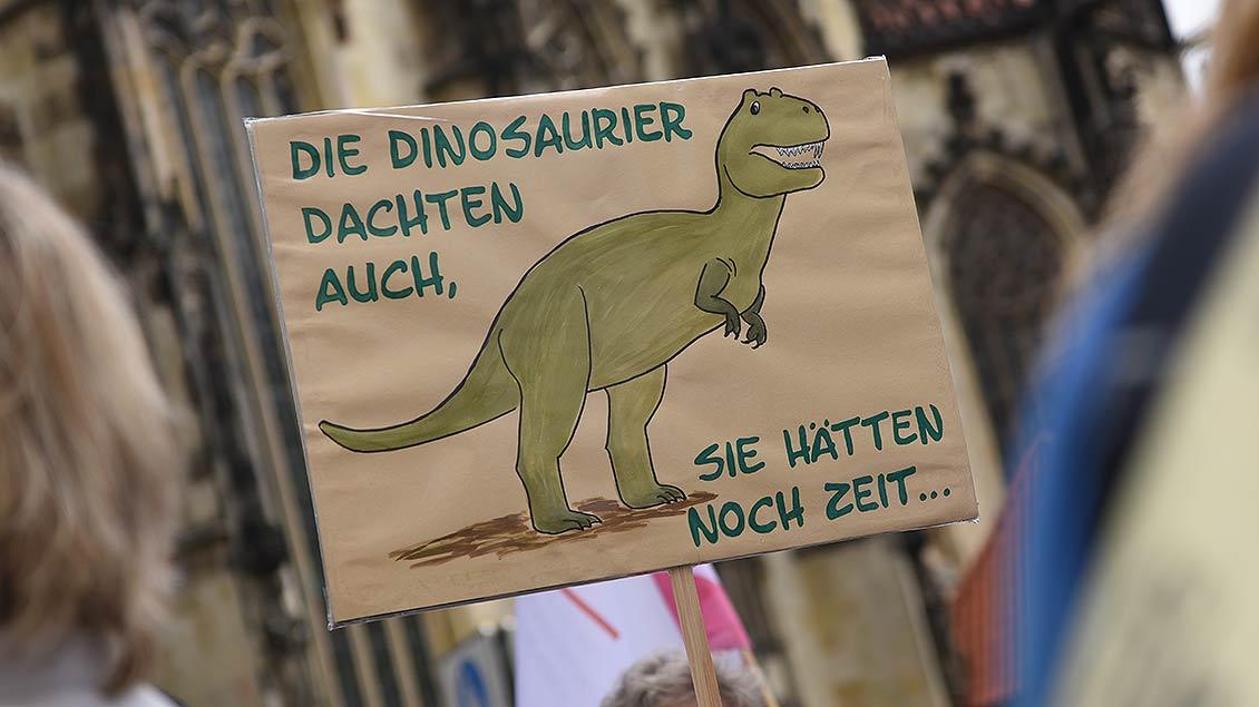 Originelle Plakate auf der Maria 2.0-Demo am Samstag, 6. Juli, in Münster. | Foto: Michael Bönte