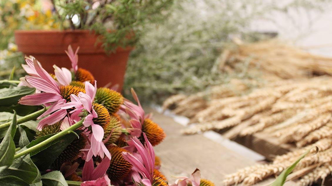 Die Kräuter aus dem Garten nehmen oder in der Natur sammeln. | Foto: Melanie Ploch