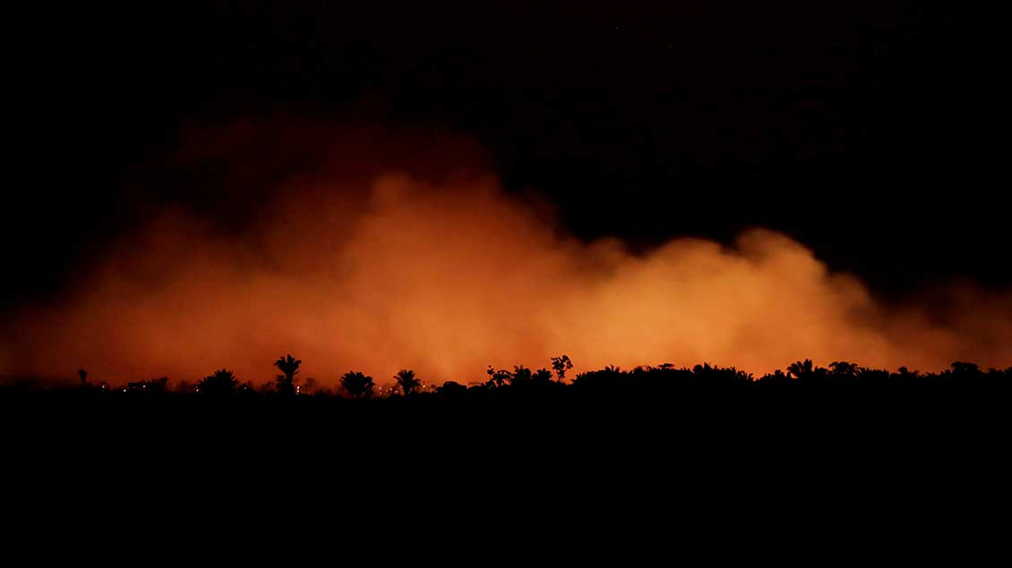 Feuer im Amazonas-Gebiet