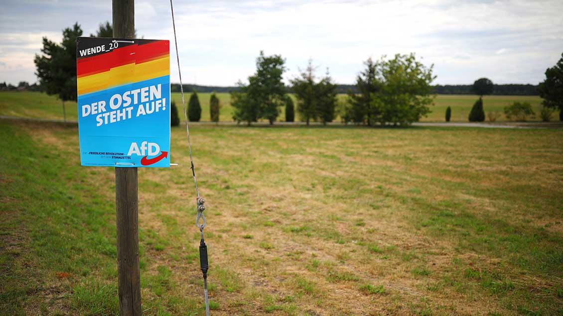 AfD-Plakat in der Landschaft