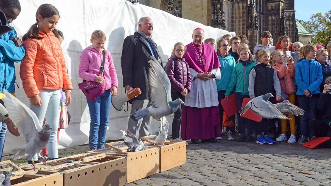 Friedenstauben steigen vor dem Dom in Münster auf