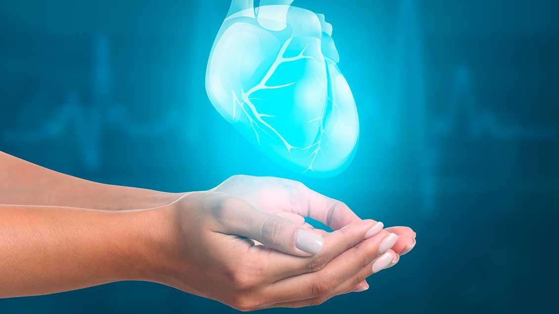Eine Hand und ein digitales Herz