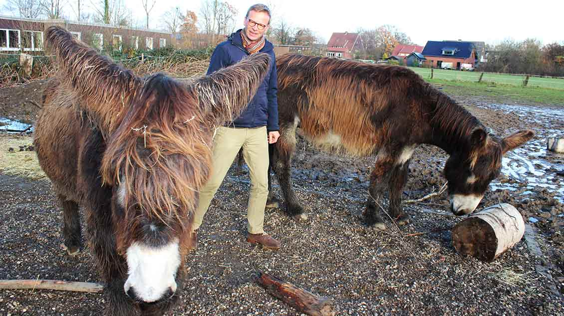 Institutsleiter Rainer Hagencord mit den beiden Eseln Fridolin und Freddy. Foto: Annette Saal