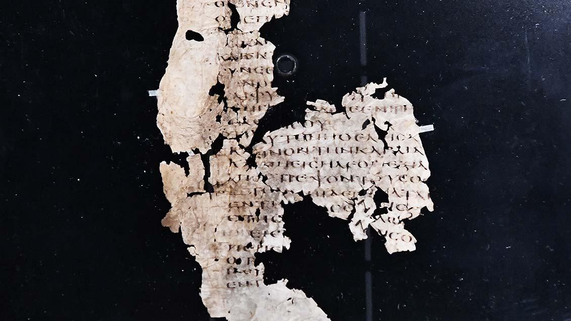 Fragment einer griechischen Handschrift auf Pergament aus dem 4. Jahrhundert vor Christus.   Foto: Michael Bönte