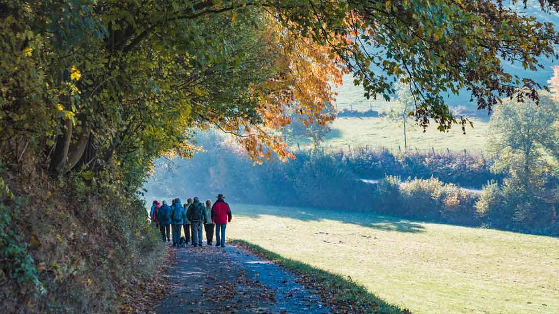 Wandergruppe im Sauerland
