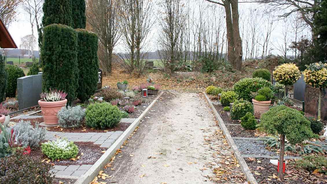 Friedhof Dinklage Foto: Michael Rottmann