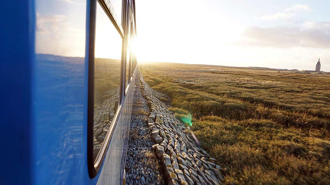 Ein Blick aus der Inselbahn, die Besucher vom Anleger der Fähre zum Bahnhof bringt, und zurück. | Foto: privat