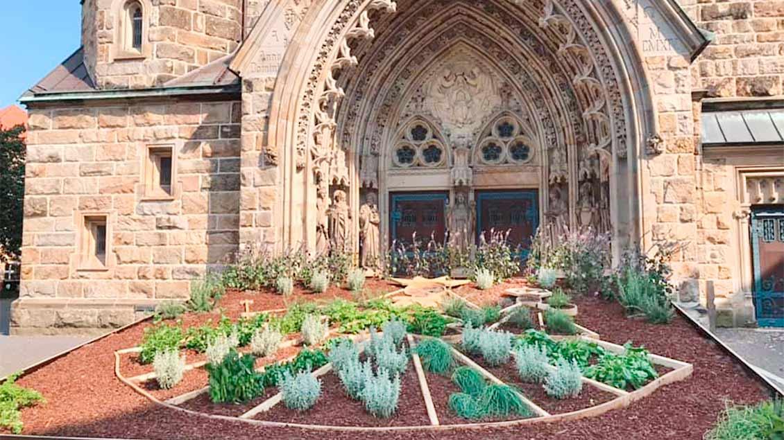 Der Kräutergarten ist vor dem Portal der St.-Laurentius-Kirche in Warendorf aufgebaut.